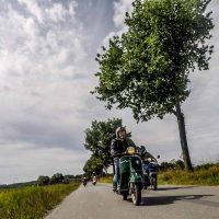 2021-08-15_wildgehege-mesekendahl-100.jpg
