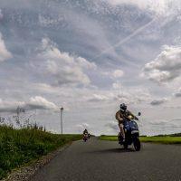 2021-08-15_wildgehege-mesekendahl-145.jpg